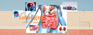 total gut (1).png