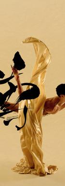 "Fernando Miro (Love, Varekai) Third Chakra [Fire] ""I respect"" 尊ぶ Personal power, Self-esteem"