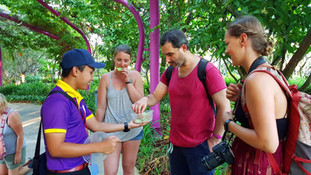 Singapore Tours_Free Walking Tour_Gardens by the Bay