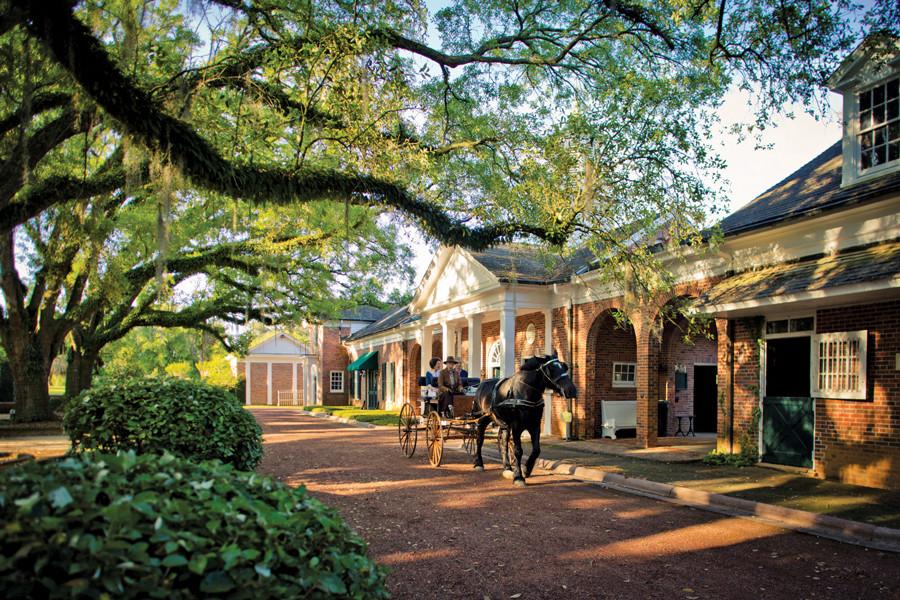 web-Pebble-Hill-Plantation-horse-and-wag