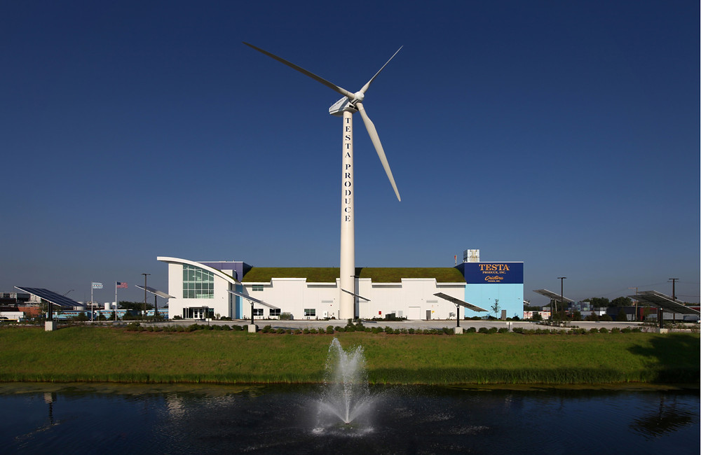 Testa Produce operates out of a $24-million three-year-old, 91,300 square-foot LEED® Platinum Certified facility on Chicago's South Side that features a wind turbine, solar panels and a 45,000-square-foot green roof.