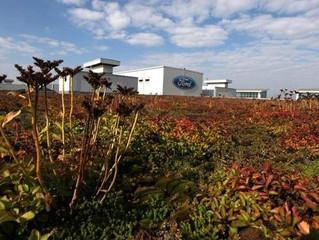 Sustainability Makes Business Sense