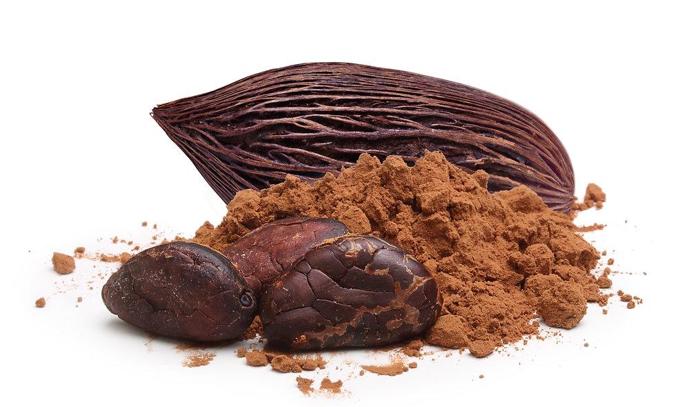 Roher Bio-Kakaopulver