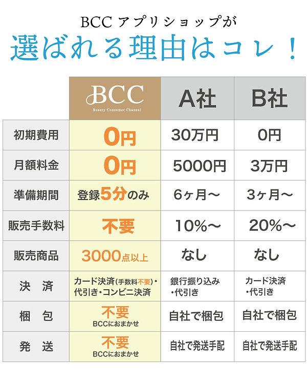 BCCLP-2_04.jpg