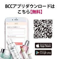 BCCハイクラスサロン向け-04.jpg