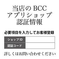 BCCハイクラスサロン向け-03.jpg