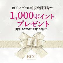 BCC1000ポイントキャンペーン-4.jpg