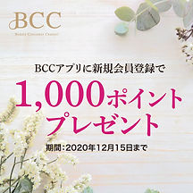 BCC1000ポイントキャンペーン-1.jpg
