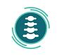 Chiropractic Hub Logo