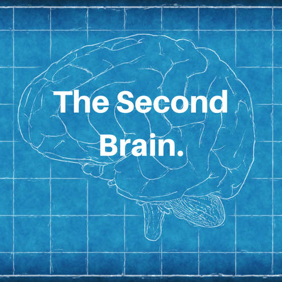 The Second Brain.