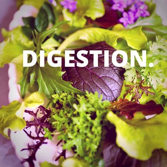 Digestion.