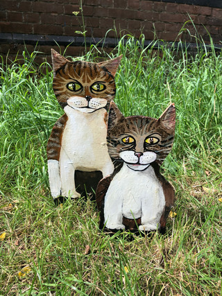 Scatter cats