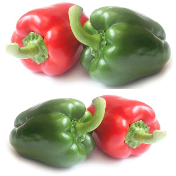Pepper bendigo - 5 Plug plants