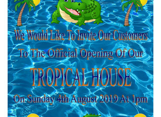 TROPICAL HOUSE OPENING
