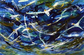 Gannets (Blue)