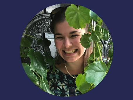 11 - Danielle DeLatte: What can computer vision tell us about craters on other planets?