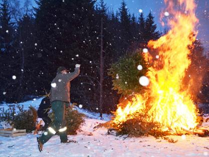 Les sapins ont brûlé avant le couvre-feu !