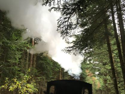 La fête de la courge en train à vapeur