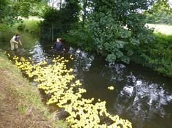 2017 Sutton duck race
