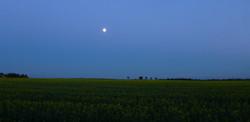 2017 Full moon above Sutton