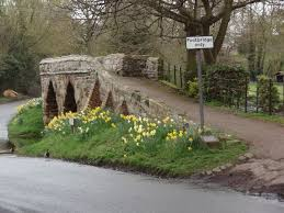 Sutton Packhorse Bridge with daffodils