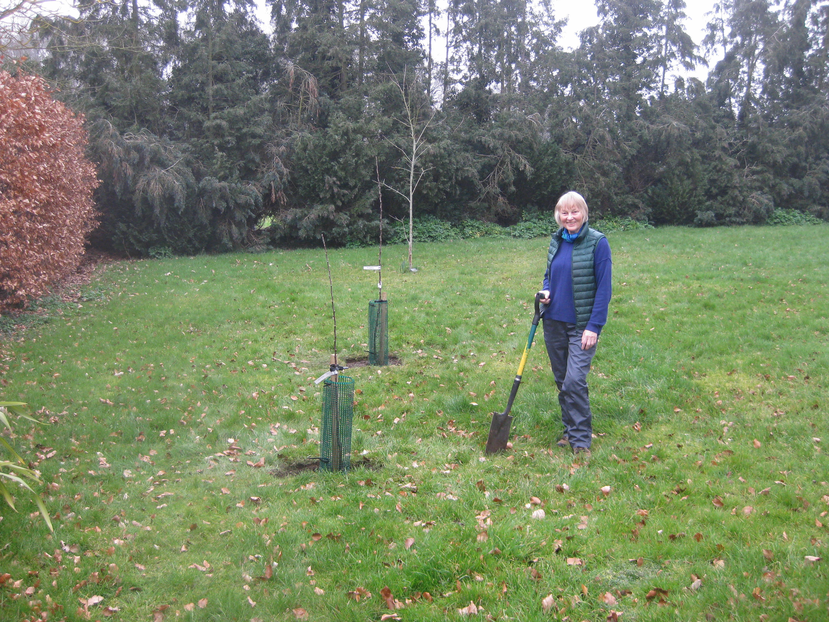 Feb 2021, fruit tree planting