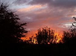 2017 Sunset, Sutton