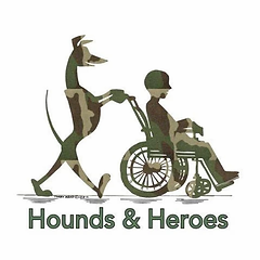 hounds and heroes.webp