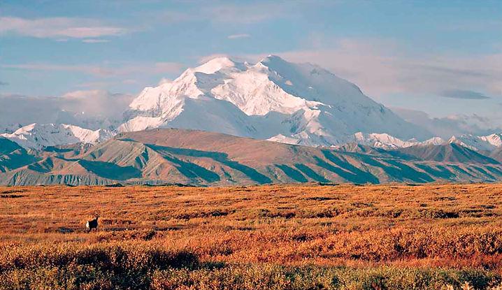 264 Mt-Denali.jpg