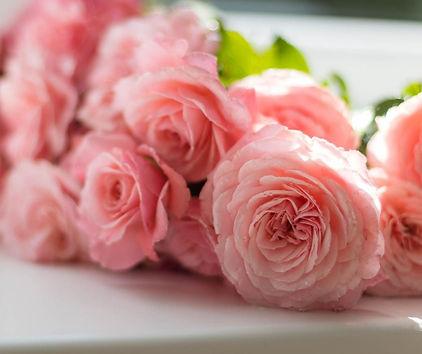 roses.jfif