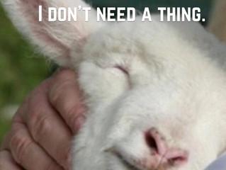 God, my shepherd!