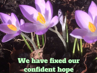 We have fixed our confident hope..