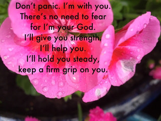 Don't panic. I'm with you.