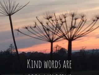 Kind words are good medicine