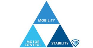 Motor Control in Golf