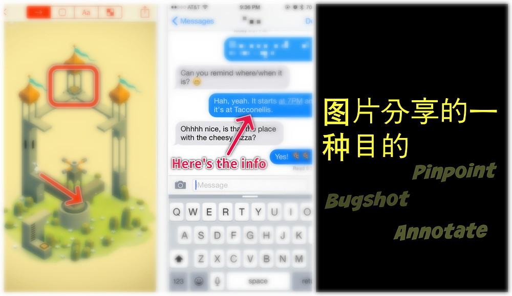 pinpoint bugshot 2.jpg