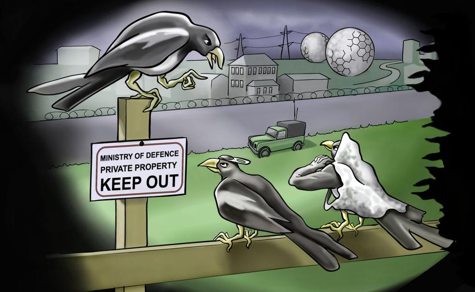Militant Magpies