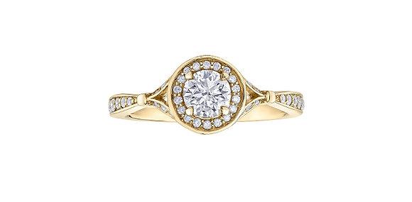 Round Cut Yellow Gold Diamond Ring with Diamond Halo