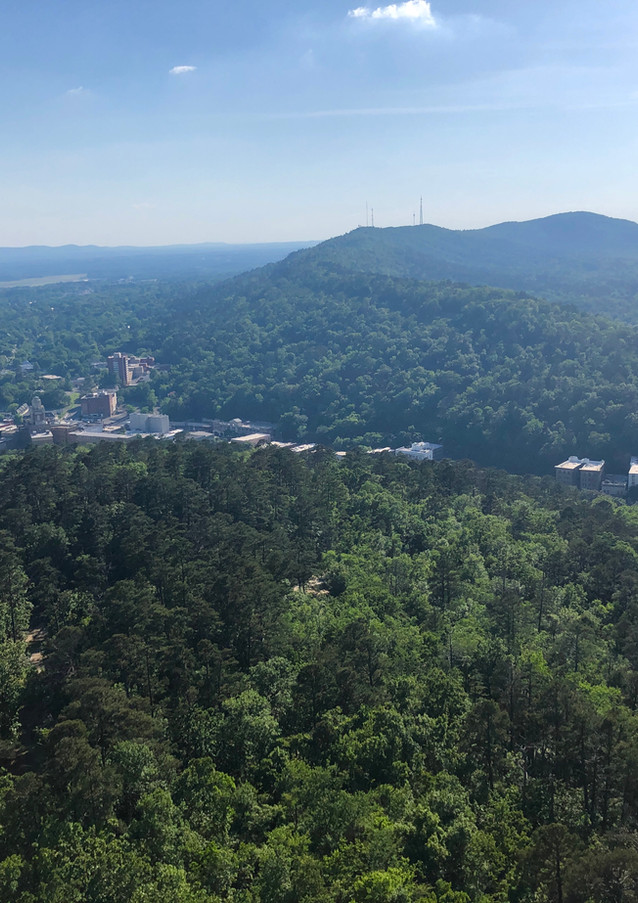 View from the Mountain Tower