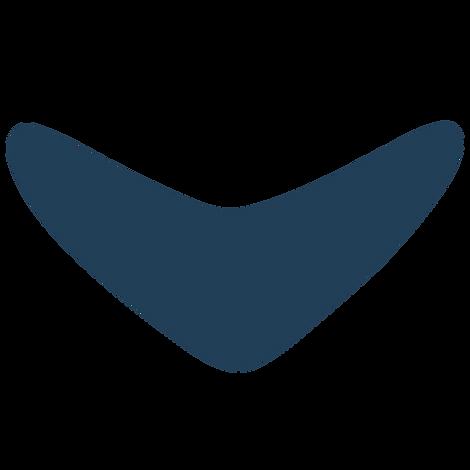 Navy Boom_4x.png