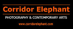 Corridor_Eléphant.jpg
