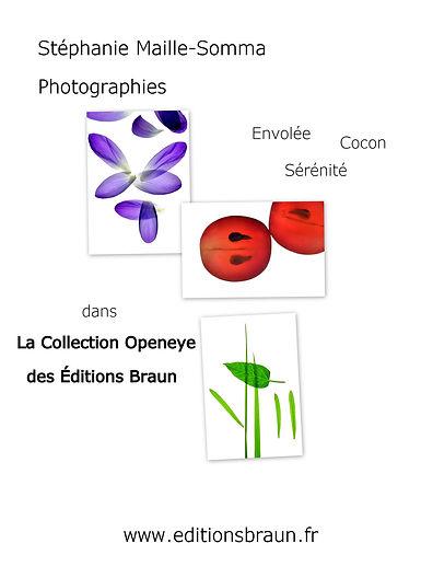 Affiche Openeye-Braun.jpg