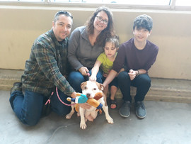 Button Adopted