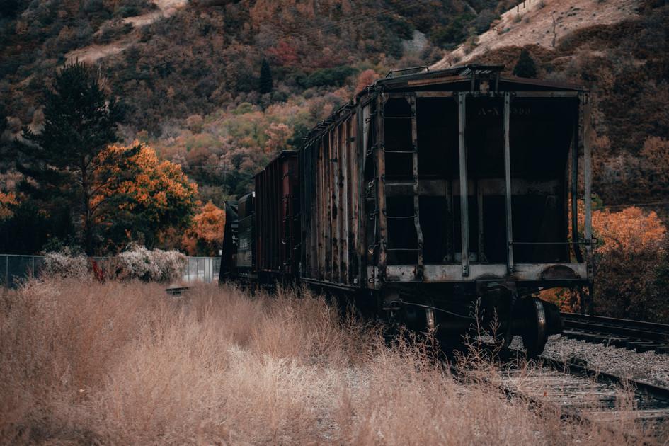 Rustic Fall Photo Train.jpg