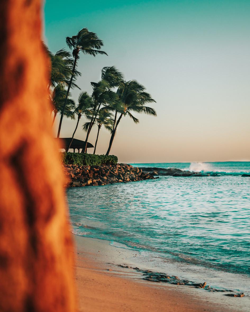 Hawaiian Paradise Cove.jpg