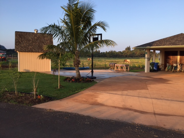 View of the Carport and Driveway