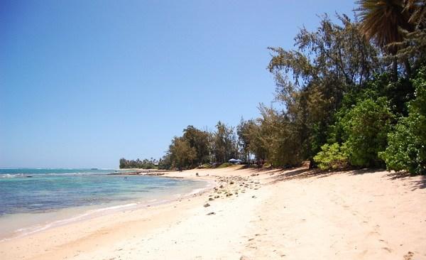 North Shore: Waialee Beach Park