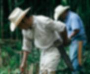 Cuetzalan_Fuji2014-3021.jpg