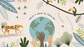 Pronunciamiento: tren maya y la libre determinación de las comunidades