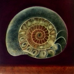 'Ammonite III'